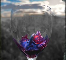 A Splash of Colour - Wine by Step9