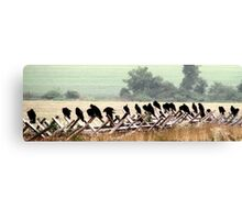 They Wait~ Vultures, Gettysburg Battlefield Canvas Print