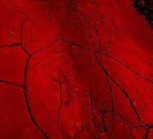 red cracked pavement  by BabyM2