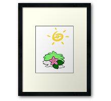 Hay Shaymin! Framed Print