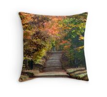 scenic October drive 2 Throw Pillow