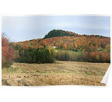 Franklin Fall Color Poster