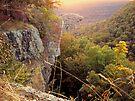 Early Morning Sun, Hawks Bill Craig by David  Hughes