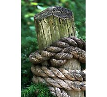 Rope Tie Photographic Print