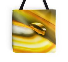 Leveraging the Light of Grace Tote Bag