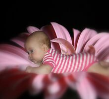 Move over Anne Geddes! LOLOL! by Magee