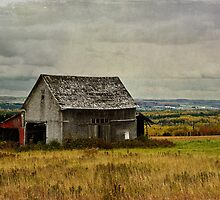 Country Barn on a Hill Top by Gary Smith