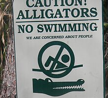 Don't swim with the Gators. by MsLynn