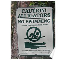 Don't swim with the Gators. Poster
