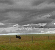 Storm's A Brewin' by Al Bourassa