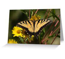Fall Tiger - Tiger Swallowtail Greeting Card