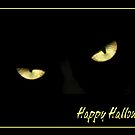 Happy Halloween 2 - Cat Eyes by AngieM