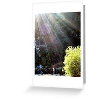 sun shinny day on the Buffalo River Greeting Card