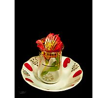 Flower in a tea cup Photographic Print