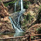 Walter Sisulu Botanical Garden Waterfall by JandeBeer
