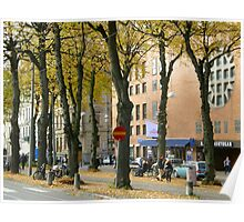 Streetview gothenburg Poster