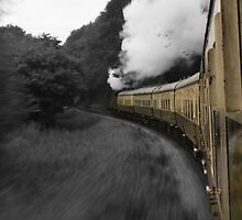 South Devon Railway by Mark Bird
