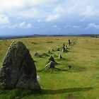 Dartmoor: Merrivale Stone Row by Rob Parsons