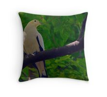 Pied Imperial-pigeon (Ducula bicolor) Throw Pillow