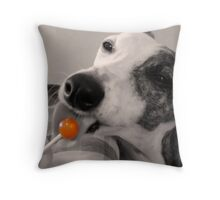 dogs like candy, too, sometimes Throw Pillow