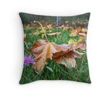A Time for Change Throw Pillow