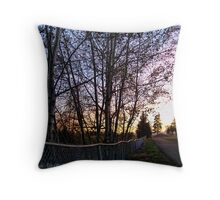 Boundary Between Life and Death Throw Pillow