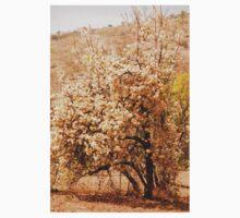 in bloom, south africa Kids Tee