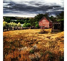 Weathered Red Barn Surrounded By Fields of Gold  Photographic Print