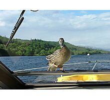 Stowaway, Loch Oich, Caledonian Canal, Scotland. Photographic Print