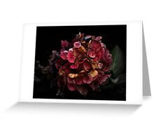 Don't Buy Me Flowers When I'm Dead Greeting Card