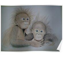 Cheeky monkeys Watercolour Poster