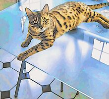 BENGAL TIGER CAT ON TABLE by elenimac