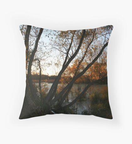 Marsh sunset Throw Pillow