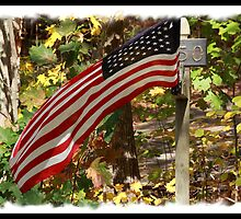 American Flag, int he fall by Falar2me