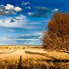 Fine Art Photography - Kane Gledhill by Kane Gledhill