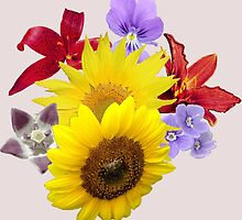 Flowers Blossom  by fashionera