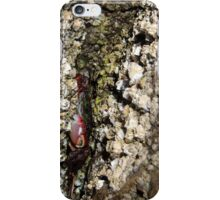 Invading a Crab's Shelter iPhone Case/Skin