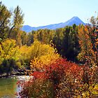 Fall Colors of Leavenworth Washington by Debbie Roelle