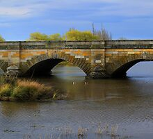 Ross Bridge panorama by Charles Kosina