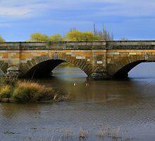 Ross Bridge panorama by Charles Kosina