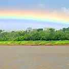 River Rain - Bolivia by Jason Weigner