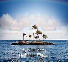MIH Challenge Award by Alex Preiss