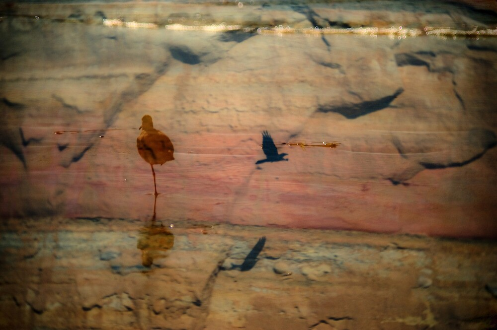 Sandstone by Mark Wade