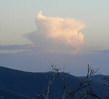 Sunset from on top Mt. Feathertop by James Dunshea
