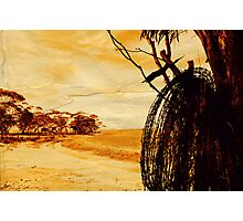 """barbed wire""    outback south australia Photographic Print"