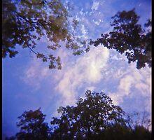 Daydreaming by polanri