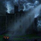 Castle at night by nishagandhi