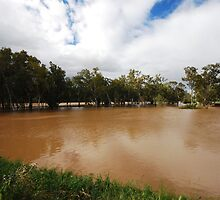 Murrumbidgee, Floods Mark 2 by bazcelt