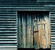 Brickendon Farm Shed Door by Adrianne Yzerman