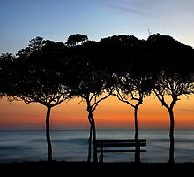 No one there to enjoy the sunset by Hercules Milas